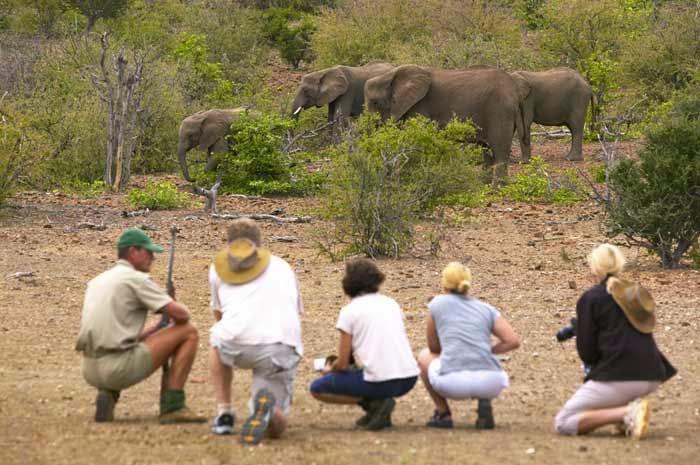 7-kruger-walking-safari Courtesy africansafaritravel 5