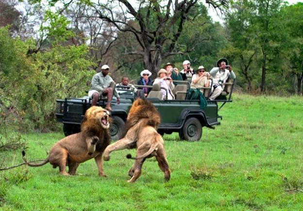 048-Pilanesberg-Game-Reserve-National-Park